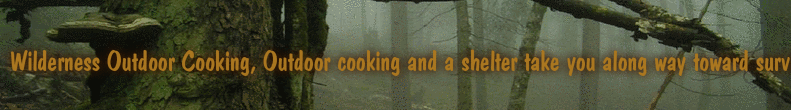 Wilderness Outdoor Cooking, Outdoor cooking and a shelter take you along way toward survival